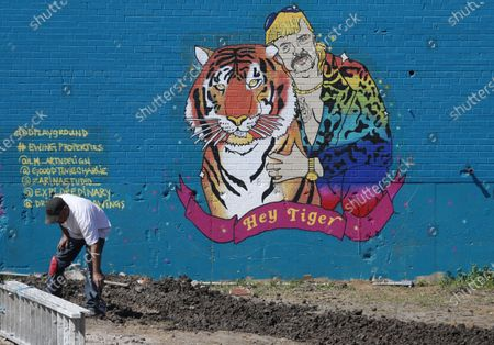 """Worker looks down near a mural depicting Joseph Maldonado-Passage, also known as as """"Joe Exotic,"""" in Dallas, . The Netflix series """"Tiger King,"""" has become popular watching during the COVID-19 outbreak. Maldonado-Passage was convicted in an unsuccessful murder-for-hire plot"""