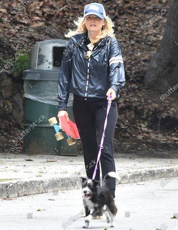 Malin Akerman walks her dog