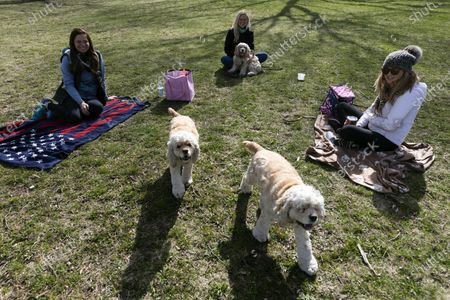 Friends, from left, Stefani Rzepecki, Diane Ferris and Kim Robinson practice social distancing while meeting in a park in the South Boston neighborhood of Boston