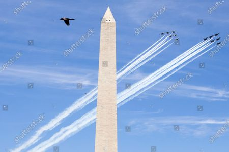A bird flies by as a flyover is conducted by US Navy Blue Angels and US Air Force Thunderbirds, behind the Washington Monument in Washington, DC, USA, 02 May 2020. US President Donald J. Trump ordered US Navy Blue Angels and US Air Force Thunderbirds to conduct flyovers 'to salute frontline COVID-19 responders', according to a US Navy statement. The flyovers are being performed in Baltimore, Washington, DC, and Atlanta, 02 May.