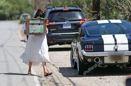 Stock Picture of Dakota Johnson and Apple Martin out and about in a GT350 Mustang during quarantine