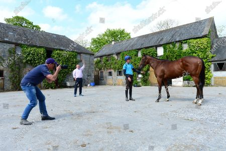 Ballyhannon House Stables, Quin, Co.Clare. Trainer Johnny Hassett's and Patrick McLoughlin photographing horses for his website ahead of the breeze up sales.
