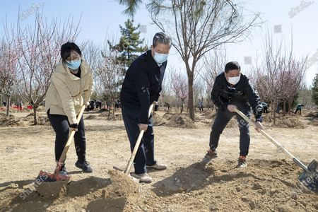 (200403) -- BEIJING, April 3, 2020 (Xinhua) -- Zhao Leji plants a tree during a voluntary tree-planting activity in Daxing District in Beijing, capital of China, April 3, 2020. Chinese President Xi Jinping, also general secretary of the Communist Party of China (CPC) Central Committee and chairman of the Central Military Commission, attended a voluntary tree-planting activity here on Friday. The activity was also attended by other leaders including Li Keqiang, Li Zhanshu, Wang Yang, Wang Huning, Zhao Leji, Han Zheng and Wang Qishan.