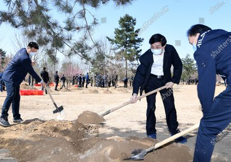 (200403) -- BEIJING, April 3, 2020 (Xinhua) -- Wang Huning plants a tree during a voluntary tree-planting activity in Daxing District in Beijing, capital of China, April 3, 2020. Chinese President Xi Jinping, also general secretary of the Communist Party of China (CPC) Central Committee and chairman of the Central Military Commission, attended a voluntary tree-planting activity here on Friday. The activity was also attended by other leaders including Li Keqiang, Li Zhanshu, Wang Yang, Wang Huning, Zhao Leji, Han Zheng and Wang Qishan.