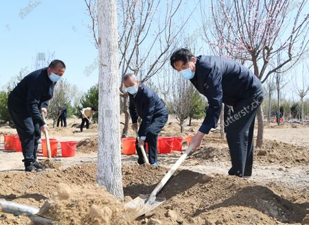 (200403) -- BEIJING, April 3, 2020 (Xinhua) -- Li Zhanshu plants a tree during a voluntary tree-planting activity in Daxing District in Beijing, capital of China, April 3, 2020. Chinese President Xi Jinping, also general secretary of the Communist Party of China (CPC) Central Committee and chairman of the Central Military Commission, attended a voluntary tree-planting activity here on Friday. The activity was also attended by other leaders including Li Keqiang, Li Zhanshu, Wang Yang, Wang Huning, Zhao Leji, Han Zheng and Wang Qishan.