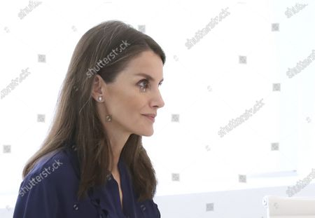 Stock Image of Queen Letizia attends a videoconference with associations of people with brain damage and their families at Zarzuela Palace