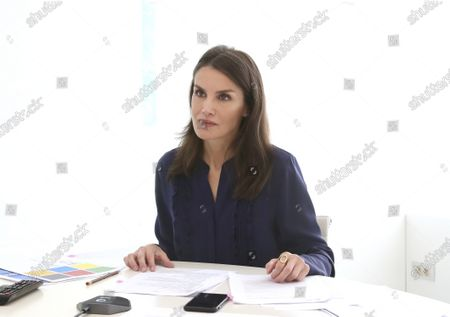 Queen Letizia attends a videoconference with associations of people with brain damage and their families at Zarzuela Palace
