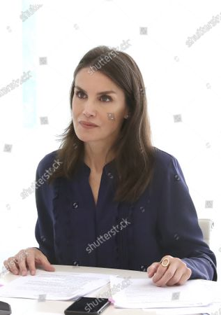 Stock Photo of Queen Letizia attends a videoconference with associations of people with brain damage and their families at Zarzuela Palace