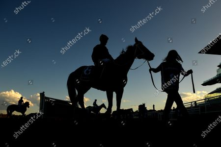 Editorial picture of Gosford Cup Day at Royal Randwick Racecourse, Sydney, Australia - 09 May 2020