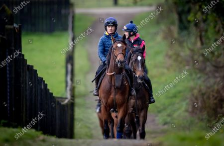Katie Walsh rides out on a two year old colt by Territories out of Miss Raven