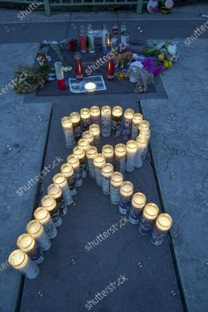 Stock Photo of Remembering Roy Horn on the Las Vegas Strip