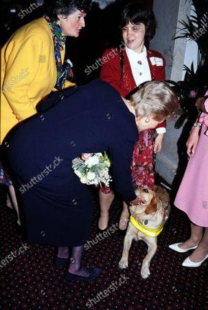Katharine, Duchess of Kent stroking a dog c.1992