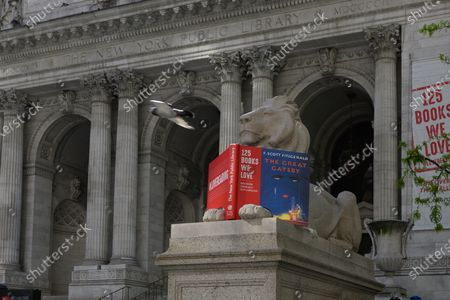 People walk past the lion statues in front of the New York Public Library during the coronavirus outbreak. The New York Public Library's historic marble lions turn 109 years oldo n May 11th. Carved by the Piccirilli Brothers in 1911, Patience and Fortitude have long guarded the library's Stephen A. Schwarzman Building on Fifth Avenue.