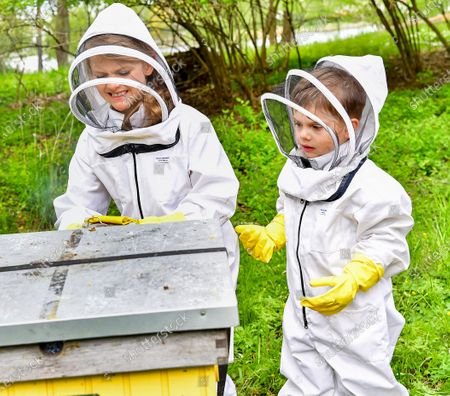 Princess Estelle and Prince Oscar tending to the beehives at Haga castle. The Crown Princess has been an honorary member of the Swedish Beekeepers' Association since 2002. The beehives at Haga was a wedding gift to the crown princess couple in from the Swedish Beekeepers' Association (SBR).