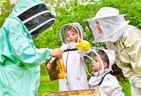 Crown Princess Victoria with Princess Estelle and Prince Oscar tending to the beehives at Haga castle together with beekeeper Lotta Fabricius Kristiansen. The Crown Princess has been an honorary member of the Swedish Beekeepers' Association since 2002. The beehives at Haga was a wedding gift to the crown princess couple in from the Swedish Beekeepers' Association (SBR).