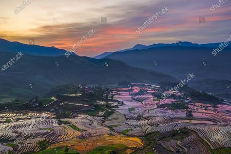 Colourful rice fields create a mesmerising landscape as they stretch across the slopes of a green valley.  Silt mixes with the brown dirt to form different hues while the sun reflects off the shallow water.  The beautiful images were captured in north west Vietnam at the height of the rice harvesting season.