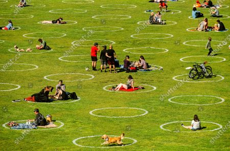 Circles designed to help prevent the spread of the coronavirus by encouraging social distancing line San Francisco's Dolores Park