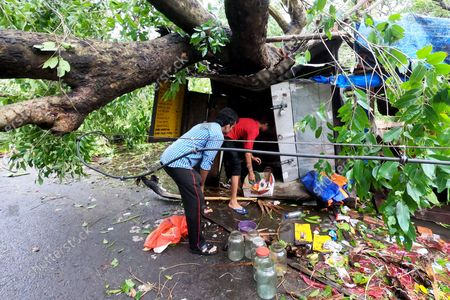 """India: After the devastating super Cyclone """"Amphan"""", at least 80 people have died in West Bengal, as per the state government. Minimum 5000 trees uprooted in Kolkata, 2500 trees in salt lake. People repairing roof of their shop temporally."""