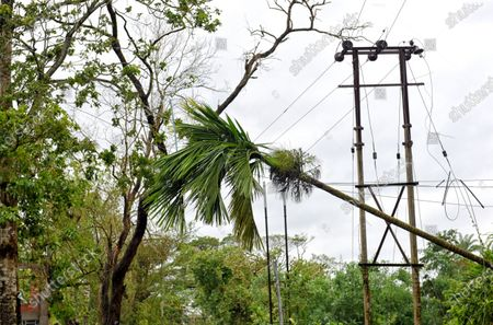 Broken electric poles and trees during the aftermath. Cyclone Amphan has hit west Bengal with a speed of 150 Km/ hr. which caused huge destruction of lively hood and 76 deaths have been reported so far.