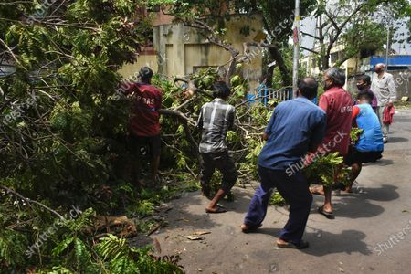 Local residents and workers of loca HP Gas dealer efforts to move fallen trees after cyclone Amphan.