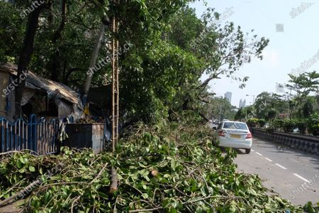Uprooted trees are seen over the road after the super cyclonic storm 'Amphan' hitted bengal.At least 72 people have died in West Bengal due to cyclone Amphan, as per the local media reported. The rains and heavy winds caused massive damage to crops and infrastructure. Internet Connectivity and power remained challenge after the cyclone.