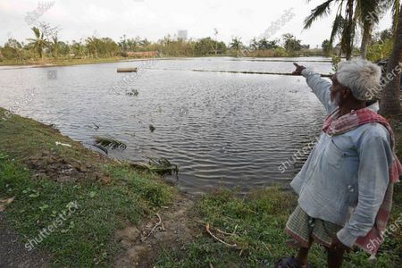 A man points towards a pond filled with saline water that has killed fresh water fish and was brought upstream due to Cyclone Amphan, at Kakdwip in the Sunderbans, South 24 Parganas district, on May 22, 2020 in Kakdwip, India.