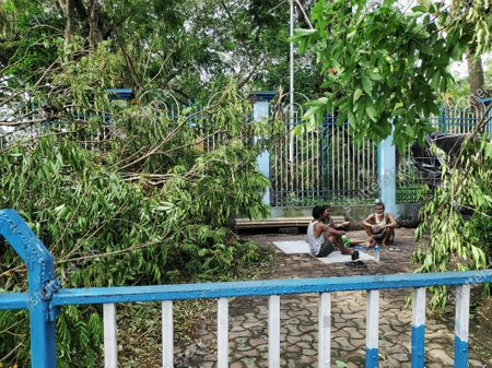 Cyclone Amphan has made Kolkata into a jungle, every trees are fallen on the ground, there is no electricity and network at many places in Kolkata.