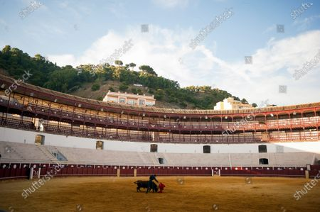 Spanish bullfighter Fernando Rey performs with a steer during a masterclass of bullfighting at an empty La Malagueta bullring as partial lockdown continues in the country amid coronavirus disease.Spanish bullfighter Fernando Rey has given a masterclass with students of the bullfighting school without the presence of spectators as a measure to prevent the spread of coronavirus. This situation shows an empty bullring and being the first bullfighting event in the city since they started the emergency state.