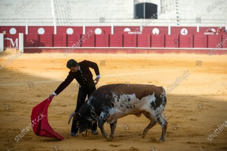 Editorial picture of Masterclass of bullfighting in Malaga, Spain - 30 May 2020
