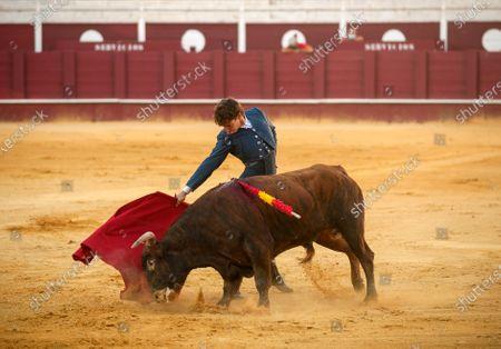 Editorial image of Masterclass of bullfighting in Malaga, Spain - 30 May 2020