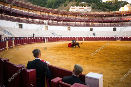 Stock Photo of Spanish bullfighter Fernando Rey performs with a steer during a masterclass of bullfighting at an empty La Malagueta bullring as partial lockdown continues in the country amid coronavirus disease.Spanish bullfighter Fernando Rey has given a masterclass with students of the bullfighting school without the presence of spectators as a measure to prevent the spread of coronavirus. This situation shows an empty bullring and being the first bullfighting event in the city since they started the emergency state.