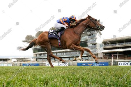 NEWMARKET, ENGLAND - JUNE 07: Ryan Moore riding Love win The Qipco 1000 Guineas Stakes at Newmarket Racecourse on June 07, 2020 in Newmarket, England. (Photo by Alan Crowhurst/Getty Images), supplied by Hugh Routledge via Racing Photographers' Pool