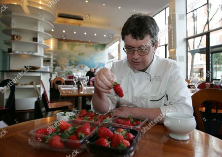 Rowley Leigh Chef At The Kensington Place Restaurant London Pictured Taste-testing A Range Of Strawberries. Leigh Declared The Best To Be Sainsbury's English Lambada Strawberries Grown In Norfolk.