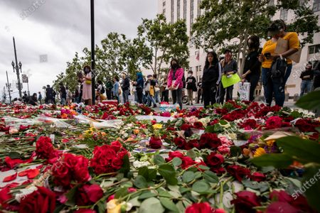 Protesters look at thousands of roses laid on the pavement in front of the Hall of Justice, the 'RoseFromConcrete' action inspired by a poem by late rapper Tupac Shakur, while hundreds continue demonstrating over the arrest in Minnesota of George Floyd, who later died in police custody, in Los Angeles, California, USA, 05 June 2020. A bystander's video posted online on 25 May, appeared to show George Floyd, 46, pleading with arresting officers that he couldn't breathe as an officer knelt on his neck. The unarmed black man later died in police custody.