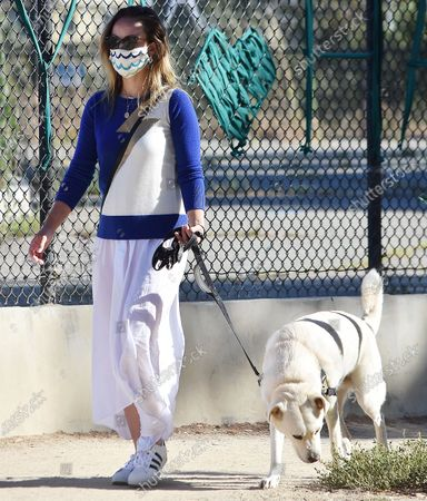 Editorial image of Olivia Wilde out and about, Los Angeles, California, USA - 07 Jun 2020