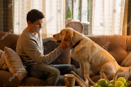 Robbie Amell as Nathan Brown