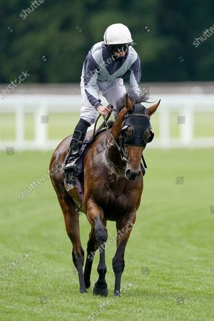 ASCOT, ENGLAND - JUNE 16: Ryan Moore riding Circus Maximus return after winning The Queen Anne Stakes at Ascot Racecourse on Day 1 of the Royal Meeting on June 16, 2020 in Ascot, England. The Queen will miss out on attending Royal Ascot in person for the first time in her 68 year reign. Her Majesty is reported to be planning to watch the racing from home at Windsor Castle, but she will not be able to attend, as the meet goes on behind closed doors due to the Covid-19 pandemic. (Photo by Alan Crowhurst/Getty Images), Supplied by Hugh Routledge