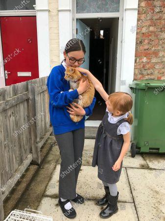 Redactionele foto van Cat survives 70mph trip in car engine, UK - 15 Jun 2020