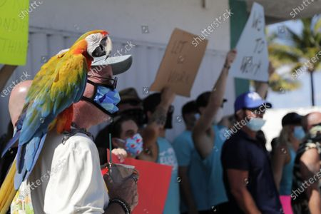"""Ed Keeler and his parrot Tabu participate in a """"Right to Work"""" rally outside of the Elbo Room bar, which remains closed, during the new coronavirus pandemic, in Fort Lauderdale, Fla. Across Florida, bars were part of the Phase 2 reopenings that occurred earlier in June, except in three counties in South Florida"""