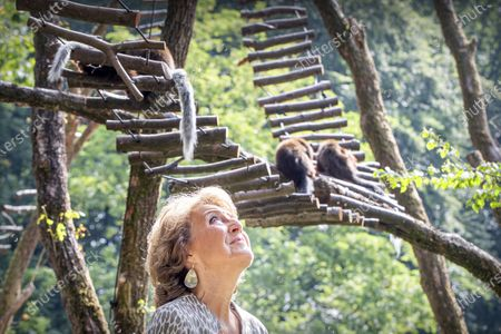 Princess Margriet opens a food forest for pygmy monkeys in Apenheul. In this area several monkey species run free and there is a more than 100 meter long insect wall.