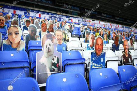 A general view of cardboard cut outs of fans