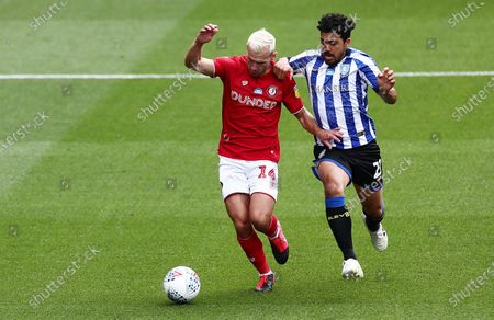 Andreas Weimann of Bristol City and Massimo Luongo of Sheffield Wednesday.
