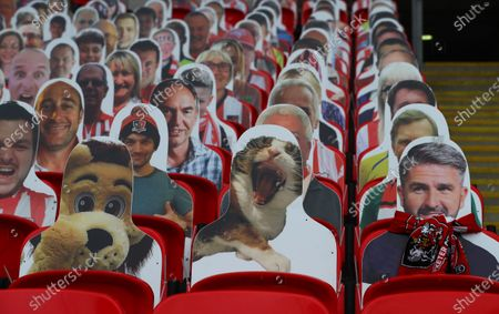 Faces on seats of the Exeter City fans, including a yawning cat, inside Wembley Stadium, before the SkyBet League 2 play off final between Exeter City and Northampton Town