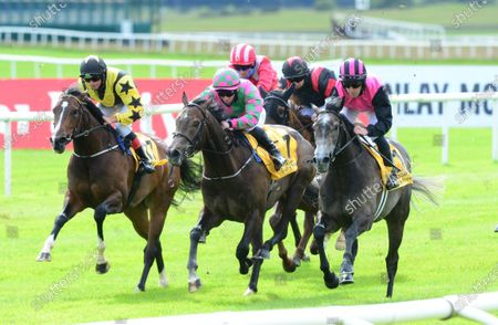 Curragh BIG GOSSEY & Michael Hussey (leaing pink & black on right) win the DUbai Duty Free Tennis Championships Handicap from FLAMING MOON & TAGGALO