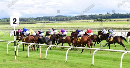 Curragh Runners race down past the 2 furlong pole in the DUbai Duty Free Tennis Championships Handicap[ won by BIG GOSSEY & Michael Hussey (leaing pink & black).