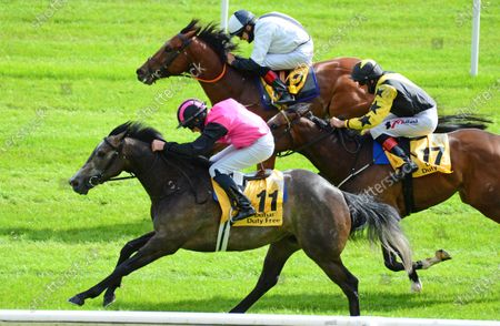 CURRAGH. BIG GOSSEY and Michael Hussey (near) wins the Dubai Duty Free Tennis Championships Handicap from Flaming Moon (far) and Taggalo (centre). Healy Racing