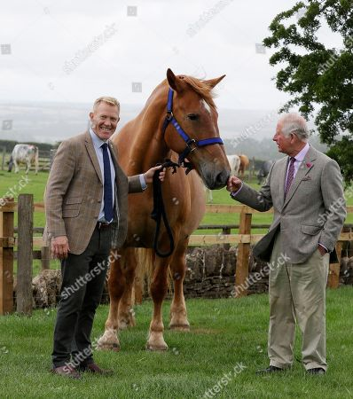 Stock Photo of Britain's Prince Charles, right, is introduced to Victoria, a Suffolk Punch horse by farmer and television personality Adam Henson, left, during a visit to Cotswold Farm Park in Guiting Power near Cheltenham, England, Wednesday, July 1, 2020. The visit to Cotswold Farm Park highlights the important work that these farm parks do in preserving British native breeds, encouraging visitors to return to them when they re-open and go back regularly throughout the year to watch the animals change and grow.