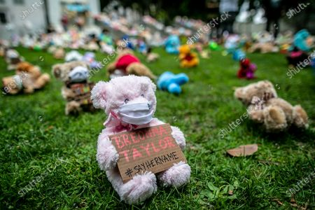 """Los Angeles, CA, Sunday, June 28,2020 - Hundreds of stuffed toys make up a temporary art installation named """"Bear the Truth,"""" at City Hall. Designed by Mae and Sydni Wynter,(cq) it is meant as """"..a positive gateway for children to use their voices for change."""" The bears were donated by local children. It is also intended to honor black children who have lost their lives at the hands of racial injustice and senseless violence. (Robert Gauthier / Los Angeles Times)"""