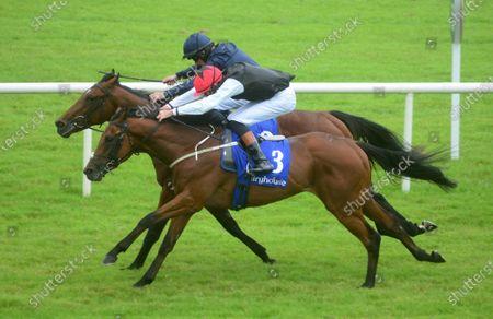 Fairyhouse REVE DE VOL and Donagh O'Connor (near) win the Irish Stallion Farms EBF Maiden from ONTARIO and Michael Hussey (far). Healy Racing