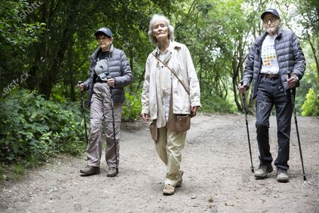 Editorial photo of Virginia McKenna OBE fundraising walk, Hampstead Heath, London, UK - 06 Jul 2020